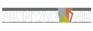 peintagone-logo-white
